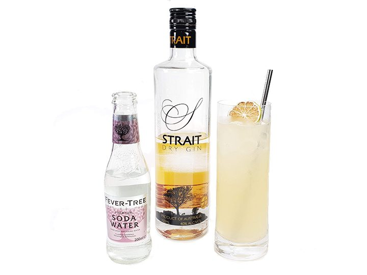 How to Drink Strait Dry Gin