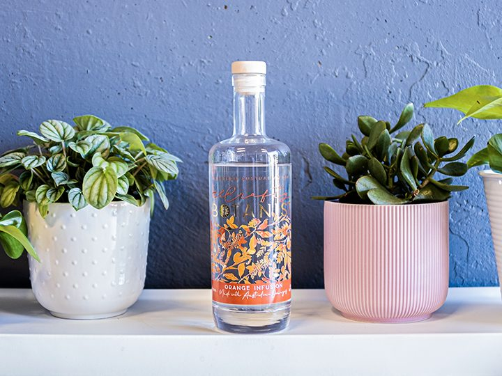 How to Drink Orange Infusion Gin